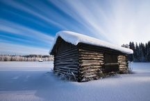 Snowy Winter Photography