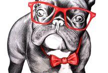 French Bulldogs ♡