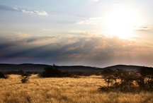 Tswalu landscapes / Beautiful images of landscapes at Tswalu, which is in an area known as the Green Kalahari of South Africa