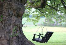 swing swing swing...