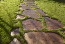 Landscaping / by Julie Garner