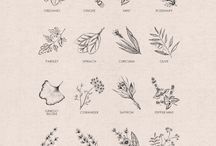 Botanical/Animal Art (and nature)