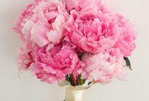 Pink wedding inspiration / Pink wedding inspiration