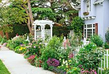 Front Yard Inspiration / Beautiful Front Yards