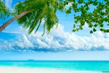 plaża fale beach waves surfing / plaża fale beach waves surfing