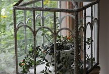 флорариумы стекло