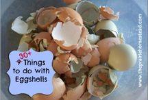 30 ting med eggeskall