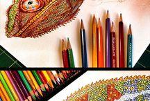 Farbička kresba
