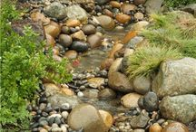 Víz tó patak