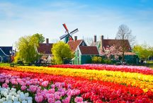 Dicas de Amsterdam / Dicas de Amsterdam, o que fazer em Amsterdam, viagem para Amsterdam, vida em Amsterdam