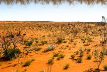 4wd Tag Along Tours in the Outback Australia
