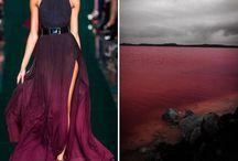 fashion and landscape