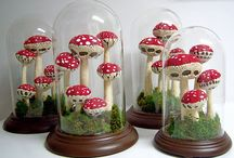 toadstools {and gnomes}