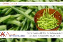 Goma cassia / Goma cassia ingested in regular food in very healthy for life