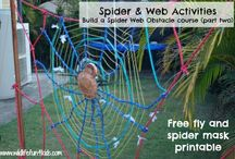 Spiders and Insects / by Sue Fred