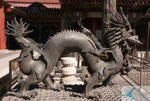 Chiny - Z Pekinu do Szanghaju / Chiny - pełna tajemnic ojczyzna Konfucjusza i filozofii jin-jang, której tajemnic od III w. p.n.e. strzeże Wielki Mur Chiński. Słynne metropolie jak: Pekin, Hongkong, Szanghaj; genialna kuchnia, bazująca na harmonii dobranych składników ze słynną kaczką po pekińsku i zapierająca dech armia cesarza Shi Huangdiego.