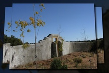 OK. Is This an Adobe Wall or What?