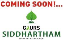 Gaur Siddhartham