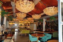 ΣΕΜΙΝΑΡΙΑ ΒΕΛΟΝΙΣΜΟΥ  2012-2014 / Σε ένα από τα πιο όμορφα πάρκα της Αθήνας, στο εστιατόριο Piu Verde έγινε η 22η τελετή απονομής των Διπλωμάτων Βελονισμού των αποφοίτων ιατρών (έτος 2012-14)