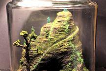 mini ecosistemas