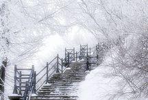 Sweet winter