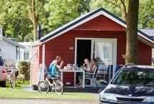 Accommodaties Camping