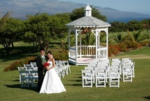 Tana's Wedding Photography / Photography ideas for Tana's Wedding