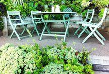 Gardening / by Elena Arielle