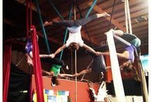 The Aerial Studio / Aerial arts, cirque, yoga and harness flying studio with classes for kids and adults.  Live events and productions.  www.theaerialstudio.net