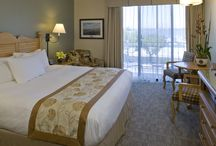 Contemporary Guest Rooms / In the Inn buildings surrounding the Mansion, you will find our contemporary rooms.  These guestrooms offer high-quality, reasonably-priced accommodations for couples, families and those traveling on business.  The rooms and suites have refrigerators and coffee service, and several suites offer full kitchens, perfect for families.