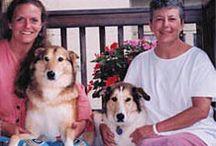 The Ortho Dog Team