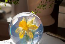 Glass Art News / What's happening in the world of glass art