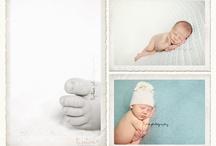 Newborn portrait's