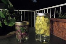 Mason jars / Water infusion ideas / by Natalie Burkette