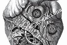 Dibujos biomecanicos