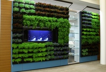 DIRTT  Environmental Solutions / by Business Interiors