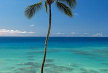 Barbados  / Barbados Island