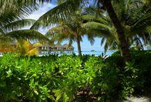 Maldives Travel Photos