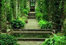 Gardens / by Erika Horner
