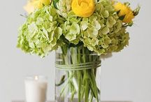Flower Power / by Elyse Bernstein