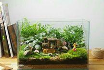 Miniatúrne čarovné záhradky