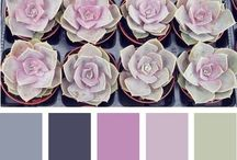 Concepts: Romantic Desert Wilderness / Medium hues of lavender, sage green, succulents in greens and purples, and prickly pear cactus green. Cacti and succulents as major decor accents, and florals of various purples, pinks and greens. Antique silver accent pieces.   Janelle and Tyler