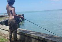 Fenwick ferals fish