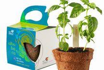 Kit de siembra Hierbas para cocinar