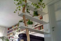 living shelf ideas