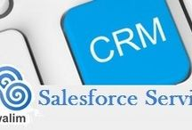 Salesforce Support Specialist / As a Salesforce consultant, Rowalim are going to be accountable for leading your multiple Salesforce implementation support and maintenance projects at one time. Our role can involve providing Salesforce consulting material expertise, maintaining and growing client relationships and providing leadership within the areas of project scoping, delivery, user training and budget management.