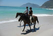 TRAVEL: SA Holiday places