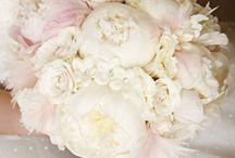 Wedding Bells | Flowers / by Jangmee Hooper
