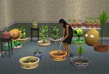 Sims 2 - Buy - Garden