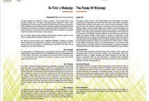 Treaty Waitangi